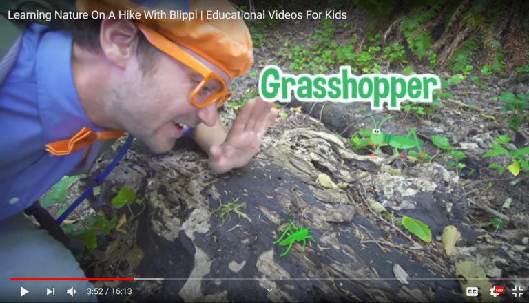 Blippi (a nature YouTuber) looks at a grasshopper.