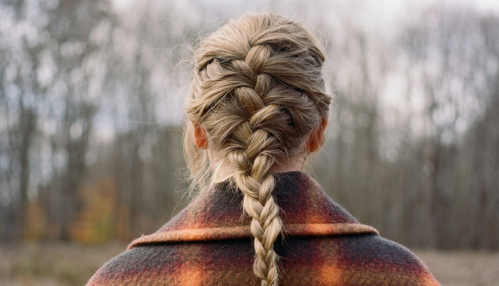 A picture of the Taylor Swift's braided pony tail.