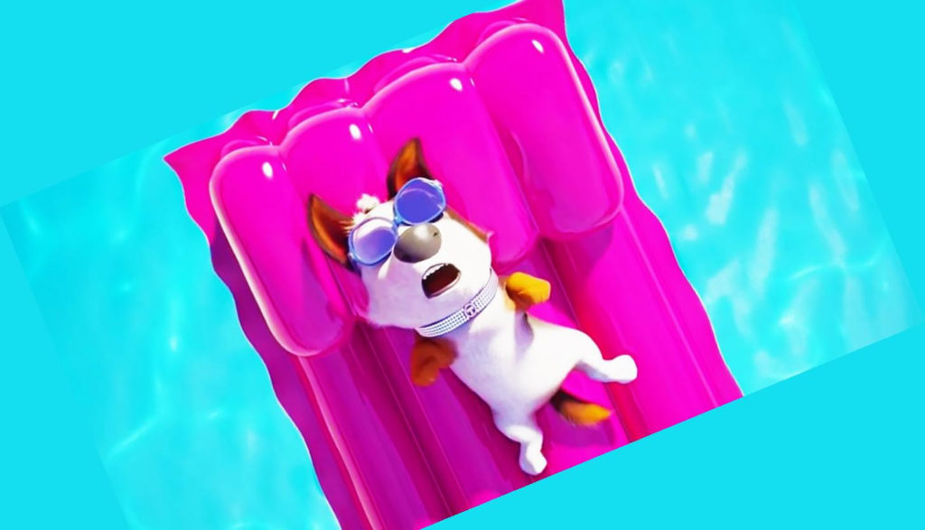 An animated dog floats on a purple air mattress in a pool.